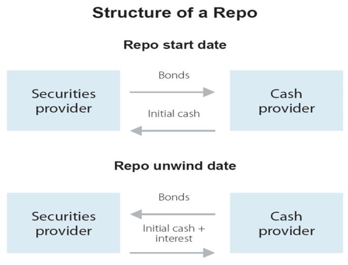 structure of a repo