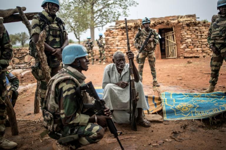 UN forces in Mali