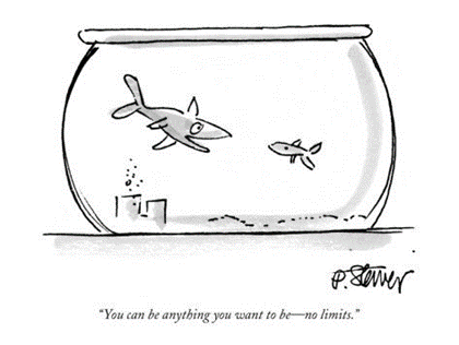 Everybody needs a fishbowl